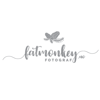 Logo for: FATMONKEY